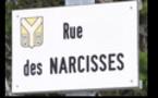 La perversion narcissique