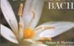 Fleurs de Bach: Livres en Fleurs de Bach
