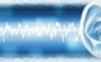 Le point sur la prise en charge psychosomatique des acouphènes. Acouphènes, Hypnose & EMDR